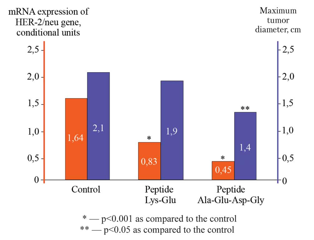 Peptides effect on the development of mammary adenocarcinoma